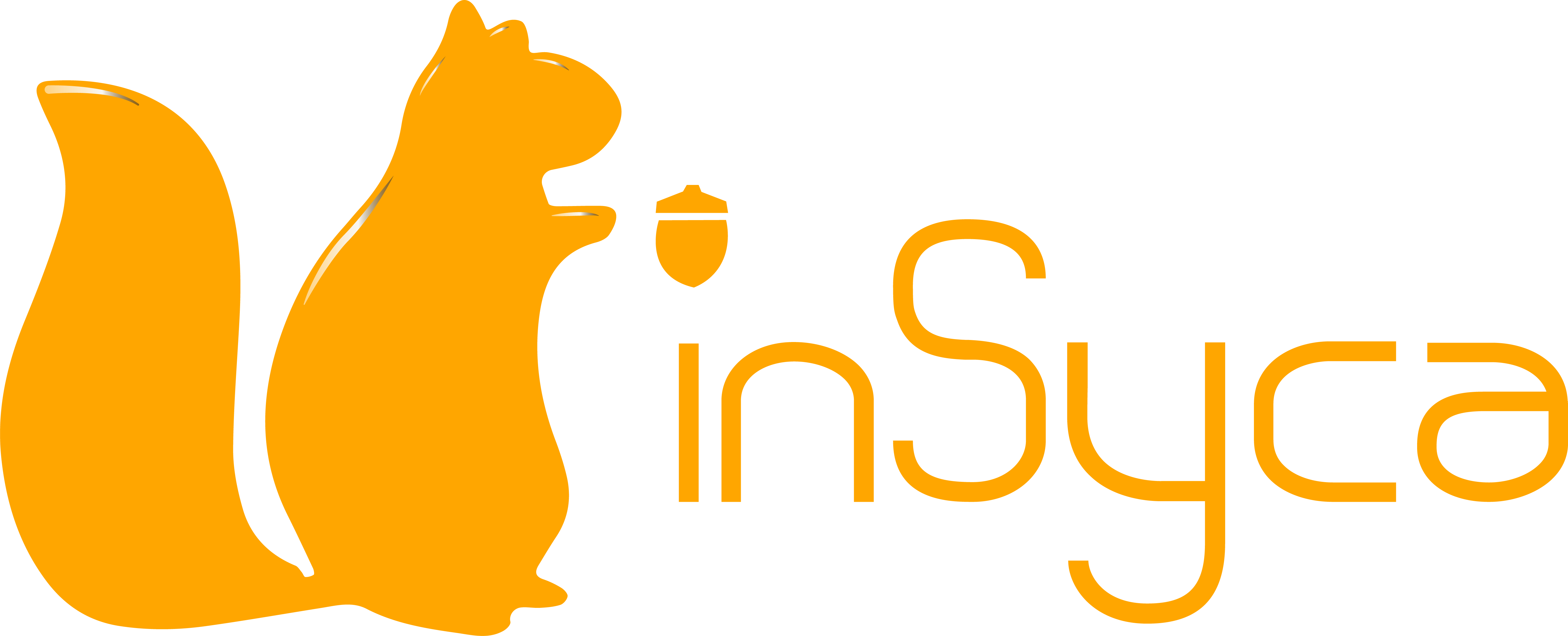 The inSyca Integration Suite